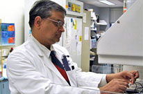 Pramod Srivastava in the lab