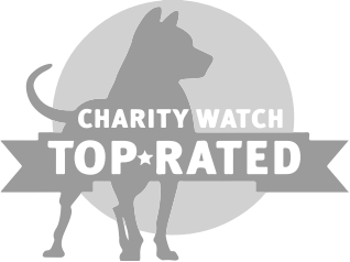 Charity Watch - Will Open in a New Window