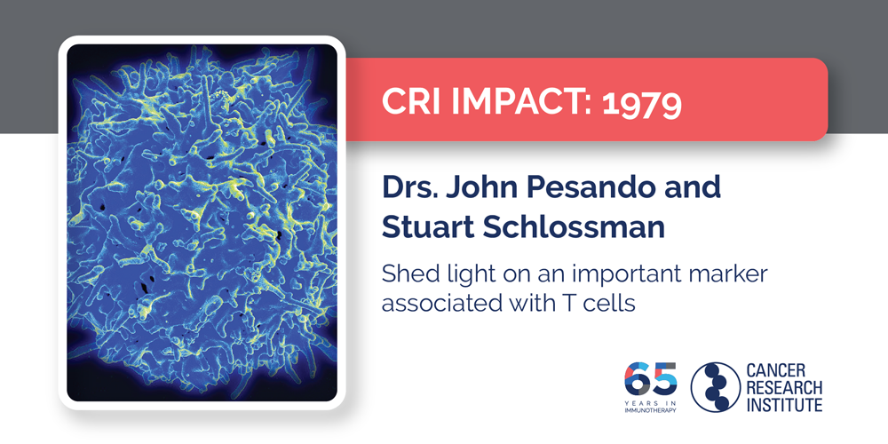 1979 Drs. John Pesando and Stuart Schlossman  Shed light on an important marker associated with T cells