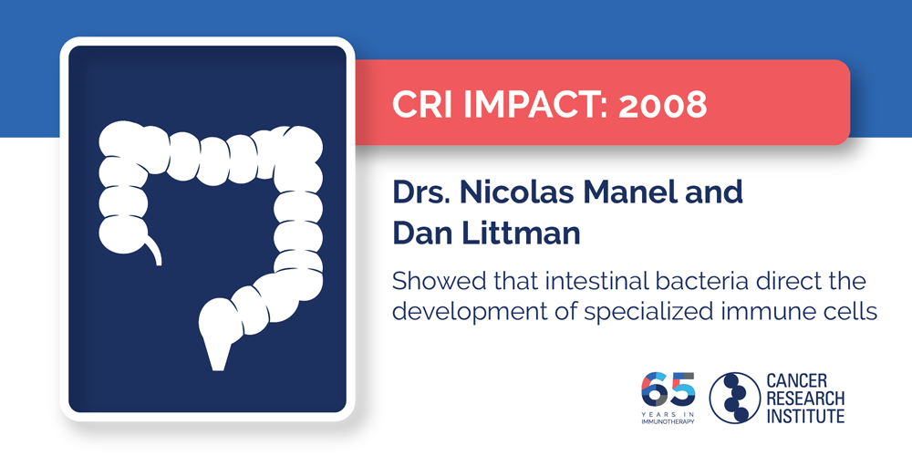 2008 Drs. Nicolas Manel and Dan Littman showed that intestinal bacteria direct the development of specialized immune cells