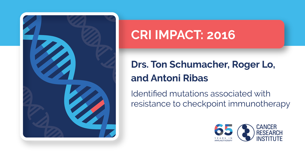 2016 Drs. Ton Schumacher, Roger Lo, and Antoni Ribas identified mutations associated with resistance to checkpoint immunotherapy