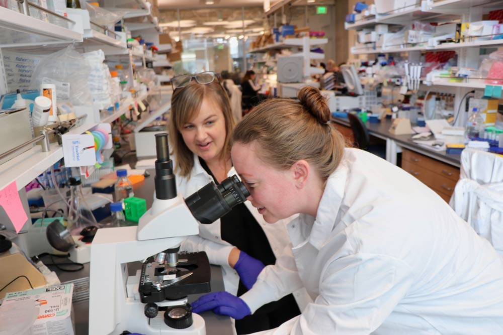 Amanda Lund, Ph.D., in her lab at Oregon Health and Science University
