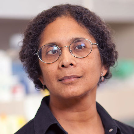 Anjana Rao, Ph.D., of The La Jolla Institute Center for Autoimmunity and Inflammation