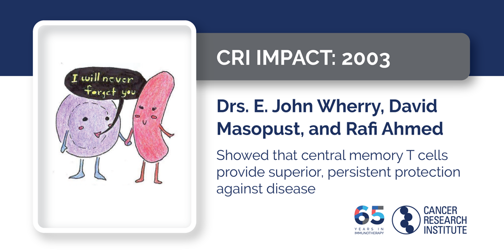 2003 Drs. E. John Wherry, David Masopust, and Rafi Ahmed showed that central memory T cells provide superior, persistent protection against disease
