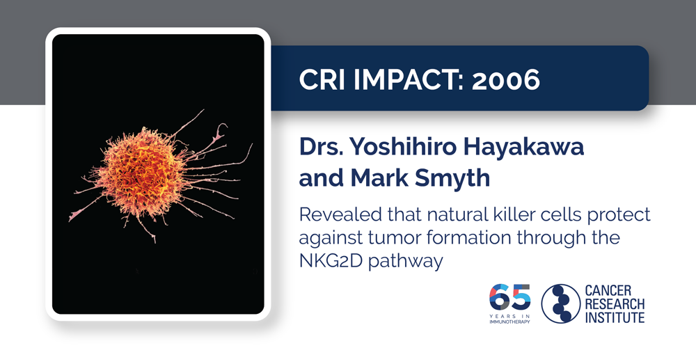 2006 Drs. Yoshihiro Hayakawa and Mark Smyth revealed that natural killer cells protect against tumor formation through the NKG2D pathway