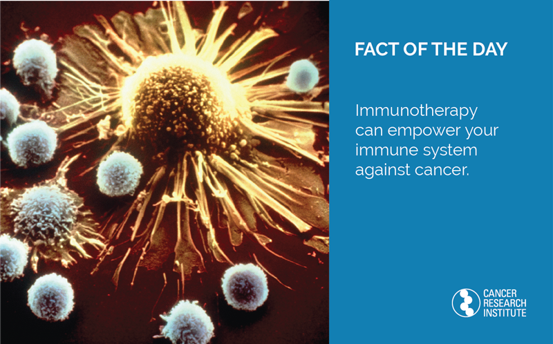 Fact of the Day: Immunotherapy can empower your immune system against cancer.
