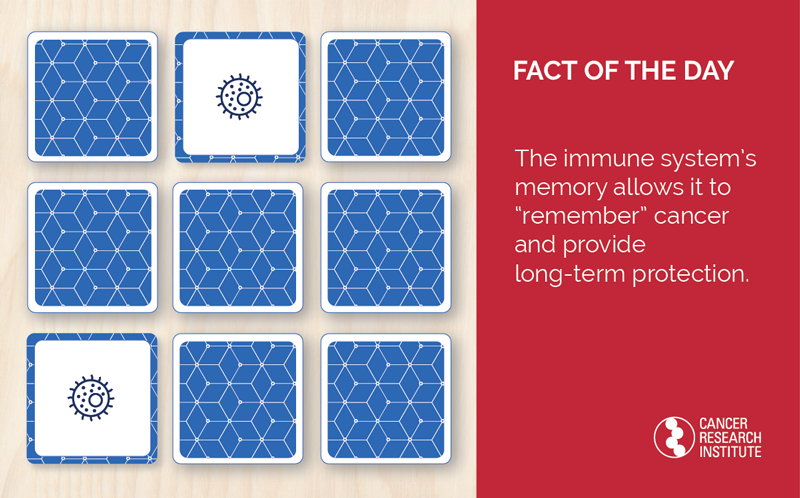 "Immunotherapy Fact of the Day: The immune system's memory allows it to ""remember"" cancer and provide long-term protection."