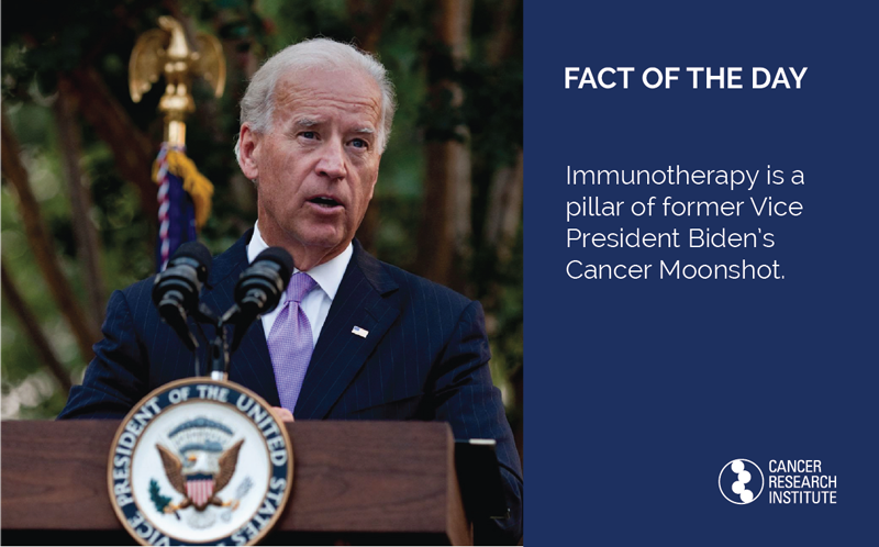 Immunotherapy Fact of the Day: Immunotherapy is a pillar of former Vice President Joe Biden's Cancer Moonshot.