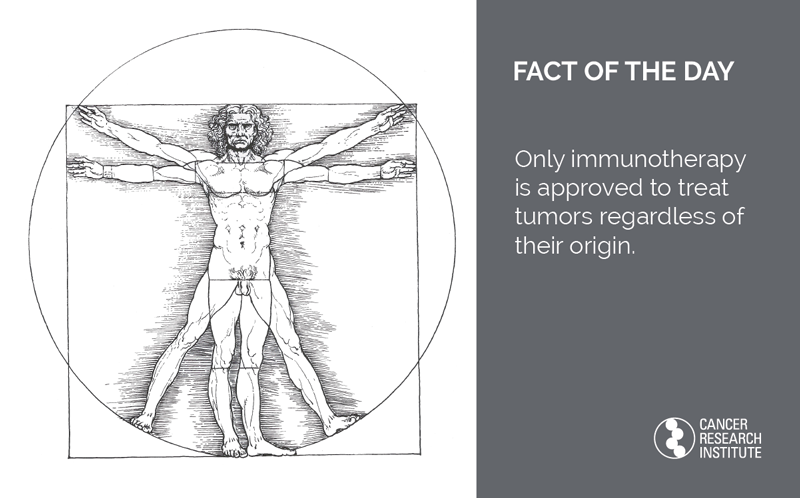 Immunotherapy Fact of the Day: Only immunotherapy is approved to treat tumors regardless of their origin.